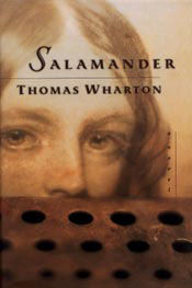 Book cover of Salamander