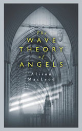 Book cover of The Wave Theory of Angels